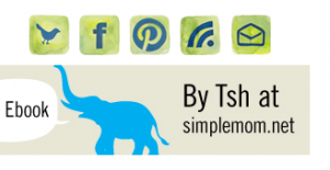 Social Media Icons at Simple Mom