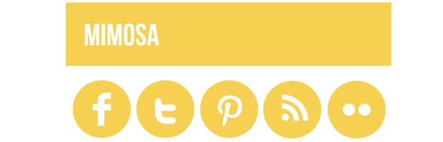 Mimosa Social Media Icons