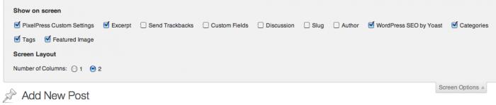 WordPress Editor Screen Options