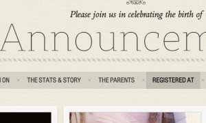 Announcement by WooThemes